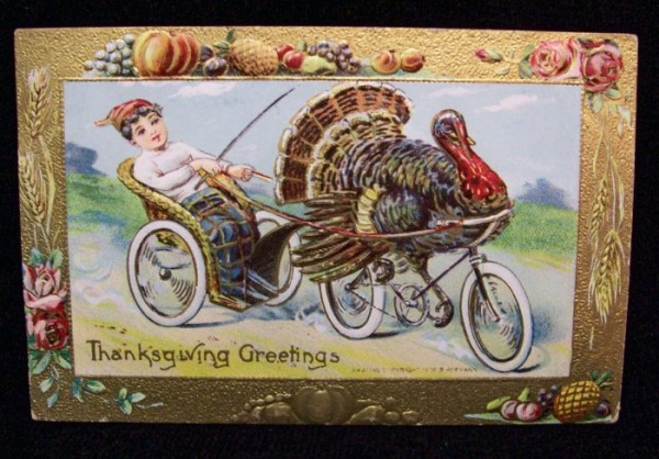 Turkey on steel bike.